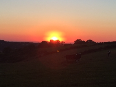 Sunset suppers at Botley Hill Farmhouse
